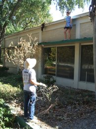 Cleaning the gutters & braving the bugs